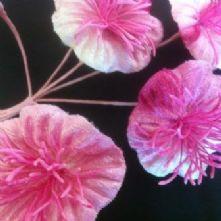 Vintage Velvet Blossoms Pinks